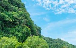 A luz solar da paisagem da montanha da floresta no verão no fundo do céu azul com espaço da cópia adiciona o texto Foto de Stock Royalty Free
