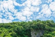 A luz solar da paisagem da montanha da floresta no verão no fundo do céu azul com espaço da cópia adiciona o texto Imagem de Stock Royalty Free