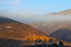 Luz solar de Altiplano Imagem de Stock Royalty Free
