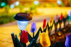 Luz solar del jardín, linternas en cama de flor Jardín Imágenes de archivo libres de regalías