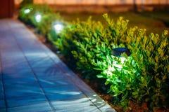 Luz solar del jardín, linternas en cama de flor Jardín Foto de archivo libre de regalías