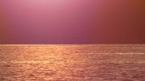 A luz solar dourada reflete na água girou profundamente - o rosa do por do sol brilhante filme