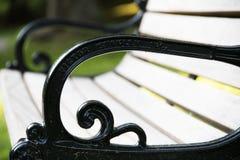Luz solar em um banco de parque em Highland Park Rochester New York imagens de stock