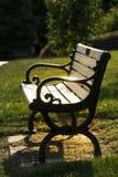 Luz solar em um banco de parque em Highland Park Rochester New York foto de stock royalty free