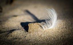 Luz solar em uma única pena branca na areia foto de stock