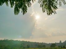 Luz solar forte da tarde no verão que brilha através do céu nebuloso em montes, nas folhas verdes, e na terra abaixo imagem de stock