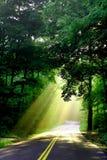 Luz solar na estrada secundária imagens de stock
