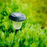Luz solar pequena do jardim, lanterna na cama de flor Imagens de Stock Royalty Free