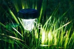 Luz solar pequena do jardim, lanterna na cama de flor Imagem de Stock Royalty Free