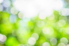 Luz verde natural com fundo do bokeh Fotografia de Stock Royalty Free