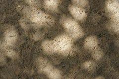 Luz y sombra en la arena fotografía de archivo libre de regalías