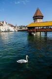 Luzern lake Royalty Free Stock Image
