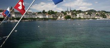 Luzerne lizenzfreies stockfoto