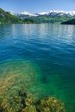 Luzerne de lac images libres de droits