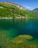 Luzerne de lac photographie stock libre de droits