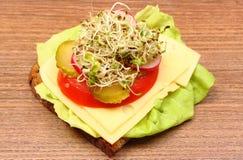 Luzerne en radijsspruiten op lepel en vegetarische sandwich Royalty-vrije Stock Fotografie