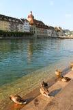 Luzerne Zwitserland Stock Afbeelding
