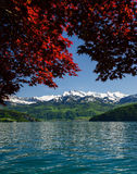 Luzerner See stockfotografie