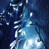 luzes Imagens de Stock Royalty Free