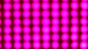 Luzes cor-de-rosa de piscamento video estoque