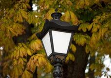 Luzes da cidade Iluminação de rua Imagem de Stock