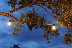 Luzes da corda em um partido do sommer Fotografia de Stock