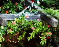 Luzes da corda esticadas sobre a um toldo foto de stock royalty free