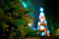 Luzes da noite de uma árvore de Natal Ano novo Fotos de Stock
