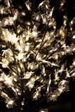 Luzes de brilho da árvore Fotografia de Stock