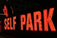 Luzes de néon do parque do auto Imagem de Stock Royalty Free