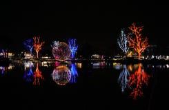 Luzes de Natal coloridas no Zoolights do festival do Arizona Imagem de Stock