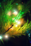 Luzes de Natal, fundo unfocused Imagens de Stock Royalty Free