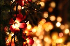 Luzes de Natal no fundo Fotos de Stock