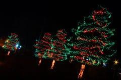 Luzes de Natal - vermelhas e árvores verdes Fotografia de Stock Royalty Free