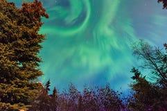 Luzes de Norrthern Fotografia de Stock
