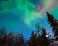 Luzes de Norrthern Foto de Stock Royalty Free