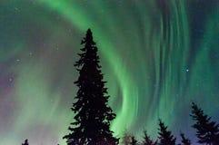 Luzes de Norrthern Foto de Stock