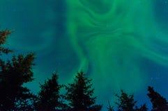 Luzes de Norrthern Imagem de Stock