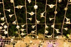 Luzes do diodo emissor de luz do Natal Imagem de Stock