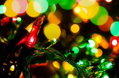 Luzes do feriado Imagens de Stock