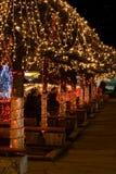 Luzes do feriado Foto de Stock