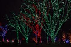 Luzes do feriado na noite Fotografia de Stock Royalty Free