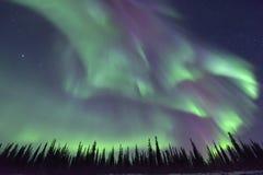 Luzes do norte coloridas Imagens de Stock