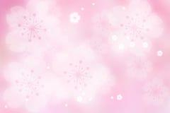 Luzes do sumário da flor de cereja Imagens de Stock