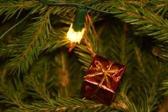 Luzes e decorações da árvore de Natal em ramos de árvore do abeto Foto de Stock