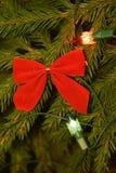 Luzes e decorações da árvore de Natal em ramos de árvore do abeto Fotografia de Stock Royalty Free