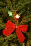 Luzes e decorações da árvore de Natal em ramos de árvore do abeto Fotos de Stock Royalty Free