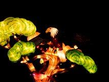 Luzes e festival de lanternas em Singapura Fotografia de Stock Royalty Free