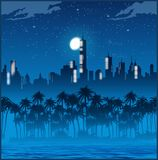 Luzes e palmeiras da cidade na noite Foto de Stock Royalty Free