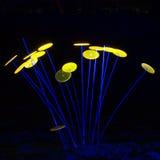Luzes mágicas no parque de Gruga, Alemanha Imagem de Stock Royalty Free